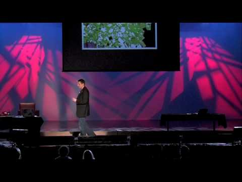 Failure Is The Best Possible Outcome: Nigel Parker at TEDxAuckland