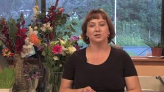 Gardening Tips & Tricks : How Do White Carnations Grow?