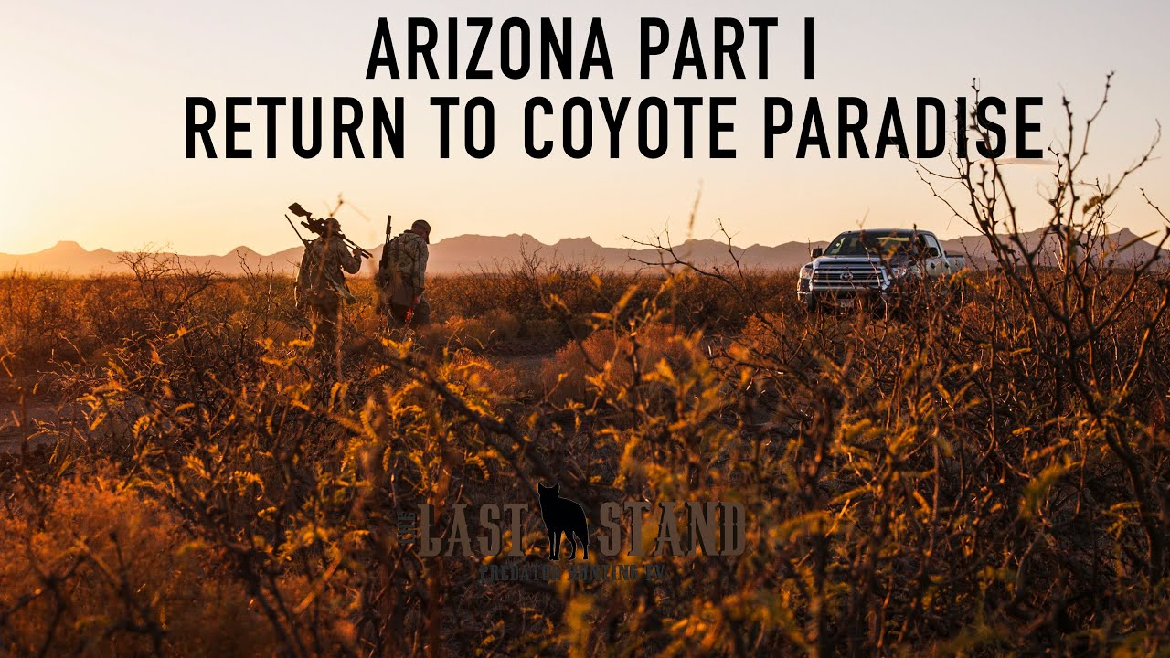 Arizona Part I: Return to Coyote Paradise | The Last Stand S3:E7 | Desert Coyotes
