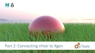 Maya Tutorial: Animate Xgen grass with nHair