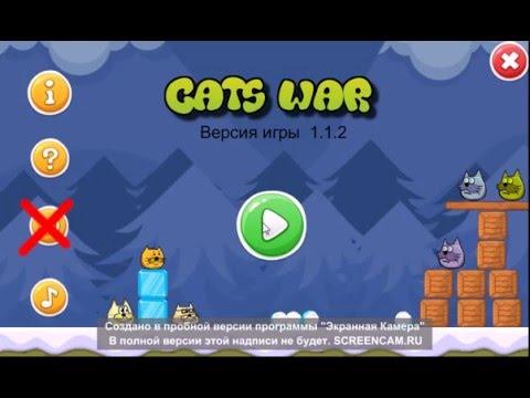 Злые птицы коты