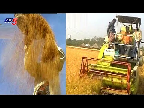 Technologies Making Farms Smarter   Agricultural Machinery & Farm machinery   TV5 News