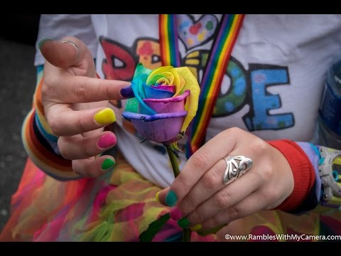 Dublin Pride 2016 Video and Photos #Equality #loveislove #dublinpride