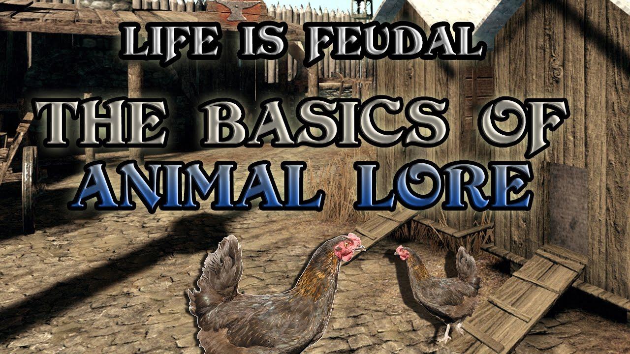 what is feudal warfare