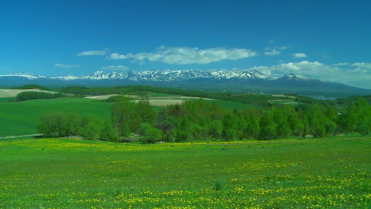 rural landscape 3