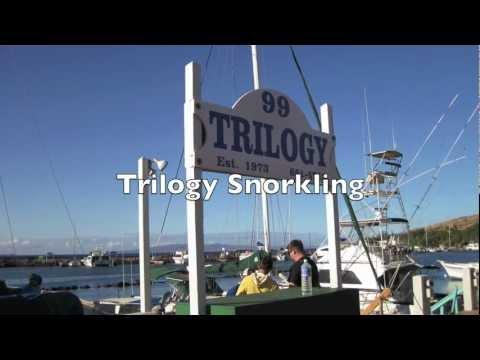 Trilogy Maui Snorkeling Tours to Molokini