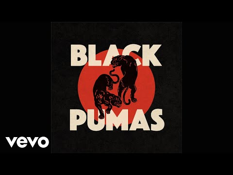 Black Pumas - Touch The Sky (Official Audio)