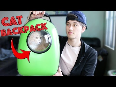 TESTING WEIRD CAT PRODUCTS!