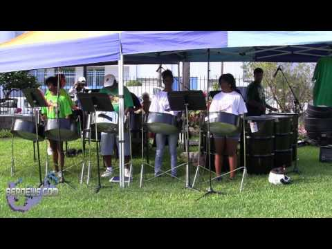 Steel Pan Orchestra At Caribbean Day, Oct 6 2012