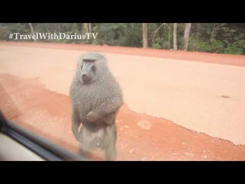 EPISODE 29: Toro Kingdom palace and Roadtrip to Kyenjojo Uganda