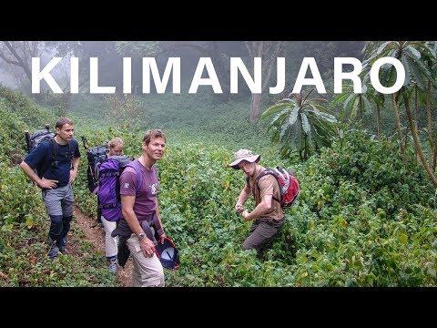 Climbing Mount Kilimanjaro - Lemosho - Day 1