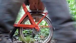 Allons au bois en Solex