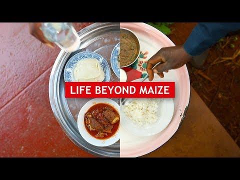 Life Beyond Maize