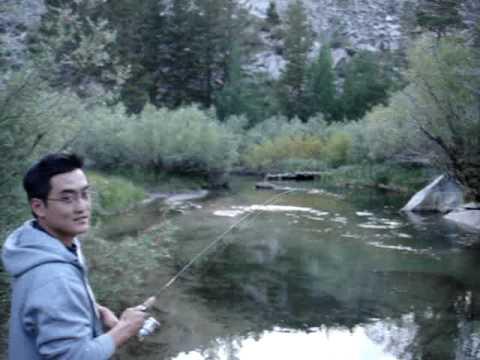 Rainbow trout fishing bishop creek youtube for Bishop creek fishing