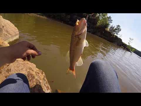 Bass Fishing At Falls Lake (Secret Spot)