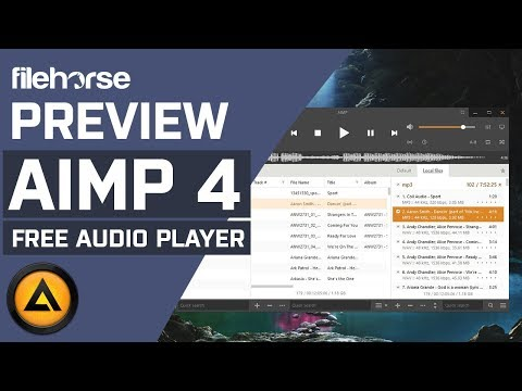 AIMP 4  An excellent free audio player with handy extra tools  Download Software Preview