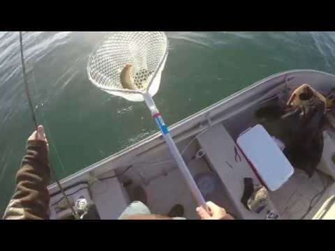 Walleye fishing the St.Clair River the first week in May