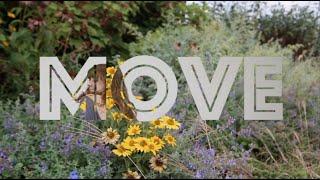 MOVE: Dance and Movement Appreciation