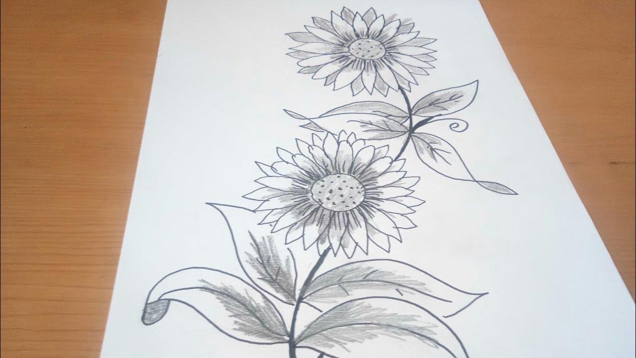 Sketsa Bunga Utk Batik Bunga Cantik Youtube