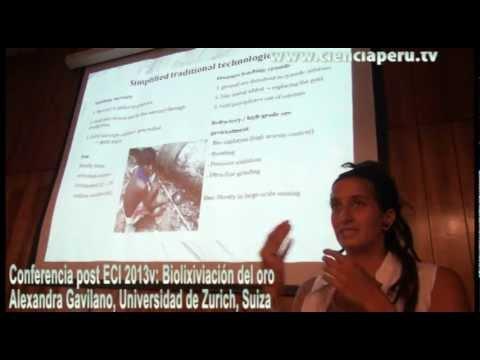 Biolixiviación del oro Alexandra Gavilano, Universidad de Zurich, Suiza. Post ECI 2013v.