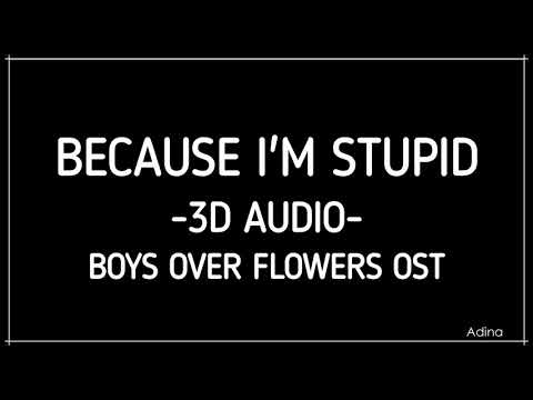 BECAUSE I'M STUPID (3D Audio) [Boys Over Flowers OST]