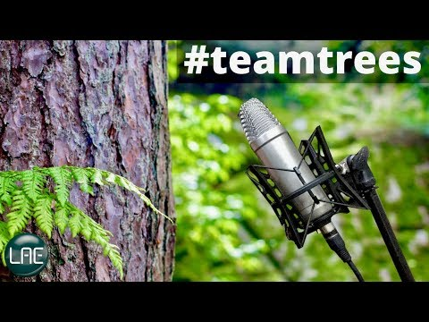 How To Make Drums Samples From Tree Sounds #TeamTrees
