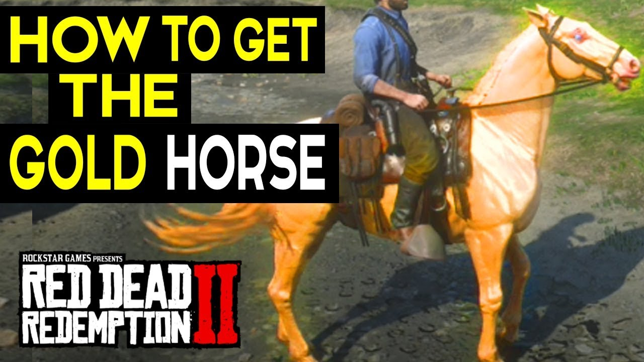 How To Get The Best Horse Gold Dutch Warmblood Red Dead Redemption