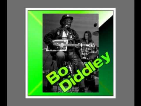 Bo Diddley - You Can't Judge a Book by It's Cover.wmv