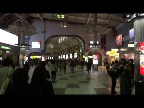 NEX Narita express from Narita airport to Shinagawa station