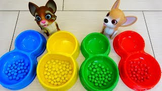 Polina playing with Toy Pets video for kids