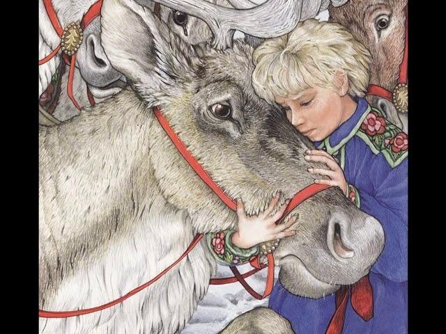 Christmas Reindeer Story 2021 The Wild Christmas Reindeer Youtube