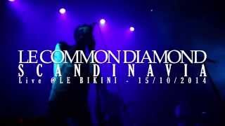 Le Common Diamond - Scandinavia live @ Le Bikini, Toulouse 10/15th/2014 (shot by Ypok)