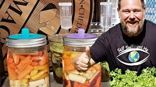 Rise of the Food Fermenters | Literal VBlog From Self Sufficient Me