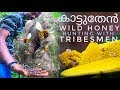 [3]    wild Honey Hunting With Tribesmen    Wild Honey Hunting In Primitive Style    Nelliyampathi