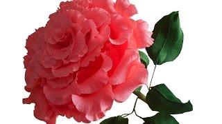 Как сделать цветы из гофрированной бумаги: мастер-класс - смотреть видео