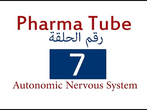 Pharma Tube - 7 - ANS - 1 - Sympathetic and Parasympathetic Part I [HD]