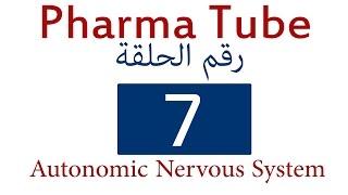 autonomic nervous system vs somatic nervous system