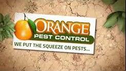 Pest Control Brevard County FL