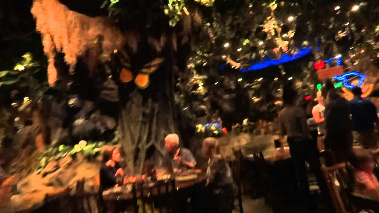 Disney World Florida Rainforest Cafe