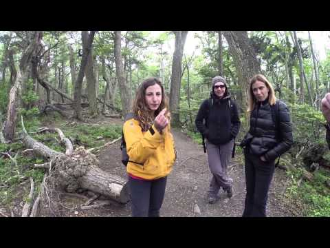 Our Adventure Lifers take a Tierra del Fuego National Park t