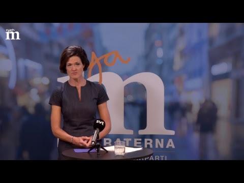 Pressträff med Anna Kinberg Batra