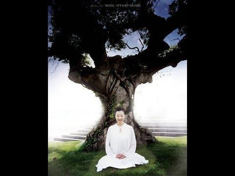 YOGA NIDRA, 이완법] 몸과 마음을 건강하게 하는 이완법(불안증, 불면증 해소)