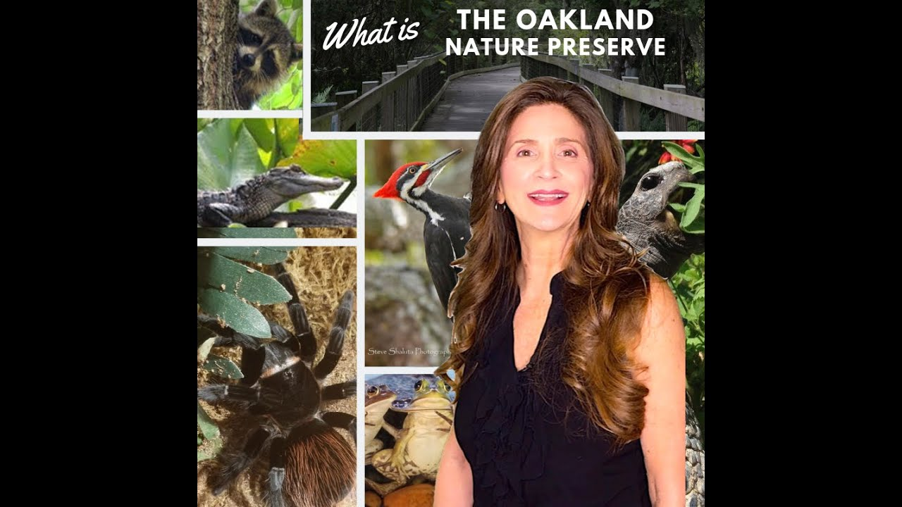 What is Oakland Nature Preserve in Oakland, Florida ?