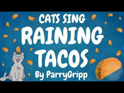 Cats Sing Raining Tacos by Parry Gripp & BooneBum | Cats Singing Song
