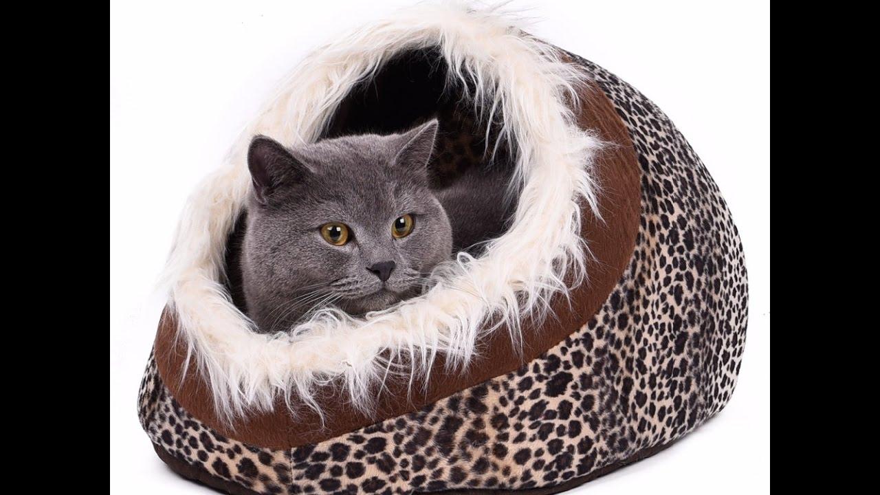 comment faire plaisir a son chat avec ce super lit douillet video you tube youtube. Black Bedroom Furniture Sets. Home Design Ideas