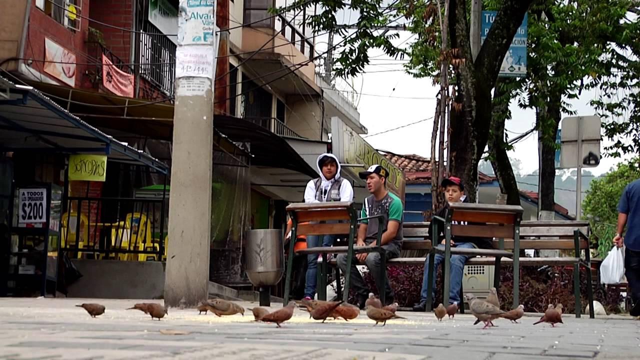 Paseo Urbano Carrera 99