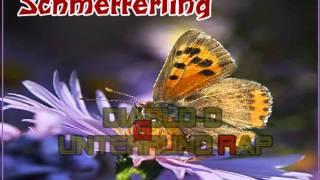 Diablo-D - Schmetterling [Song Vorstellung]
