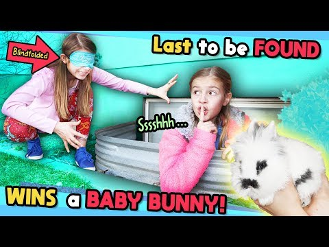 Blindfold Last To Be FOUND Wins CUTE Baby BUNNY!! Tannerites Hide and Seek Game!