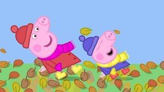 Peppa Wutz | Herbstzeit - Ganze Episoden | Peppa Pig Deutsch Neue Folgen | Cartoons für Kinder