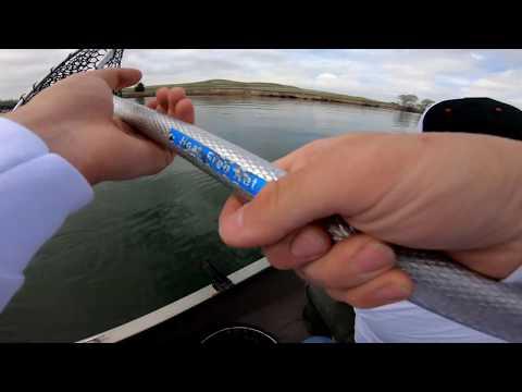 WALLEYE FISHING - Trolling For Fish - Colorado